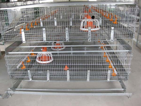 Broiler Harvesting Cages manufacturer