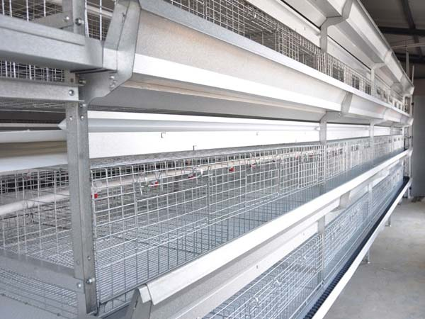 H-frame broiler battery cages for sale in China