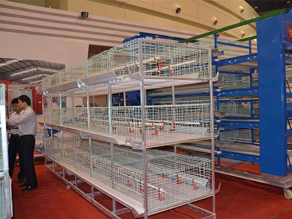 chicken poultry farming cage for sale