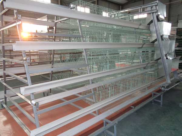 broiler breeder cage for sale in China
