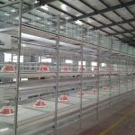 The characteristics of the sales of automated hens breeding equipment