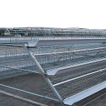 Poultry chicken farming battery chicken cages