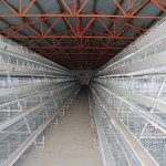 poultry equipment manufacturers india