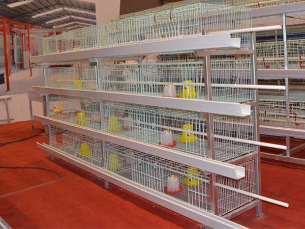 Image result for poultry cage