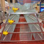 Poultry battery cage