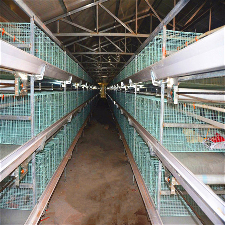 poultry farming battery cage equipment