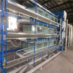 The battery broiler cages manufacture and character