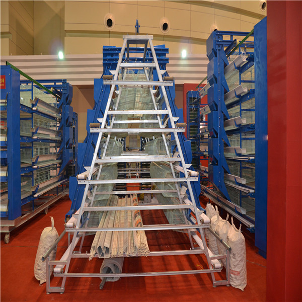 poultry farming chicken cage A-type