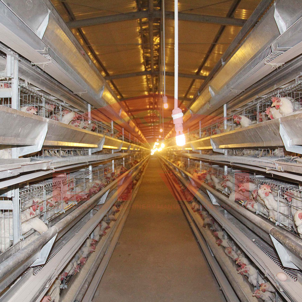 poultry battery cage for sale